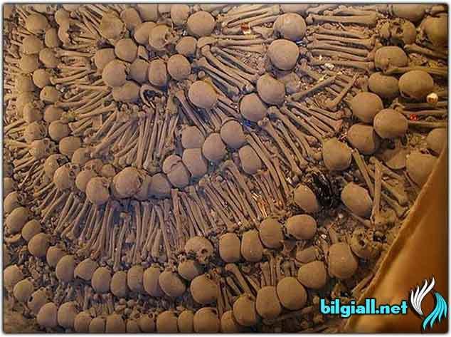kemiklerden-insa-edilmis-yapilar; insan-kemiginden-yapilan-yapilar