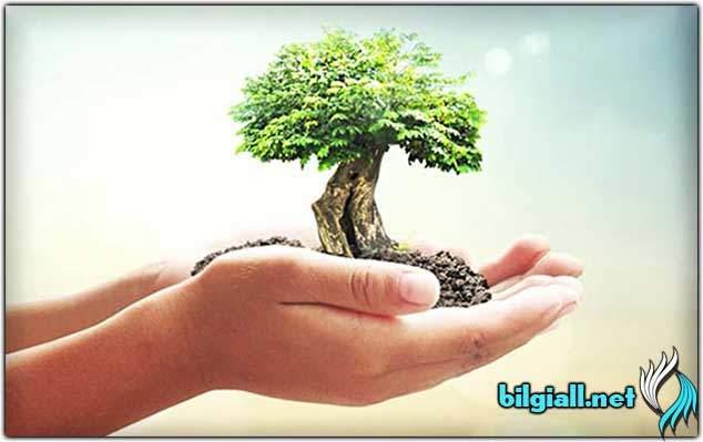 sorumluluk;sorumluluk-nedir;sosyal-sorumluluk-projeleri;sorumluluk-es-anlami;sorumluluk-ne-demek