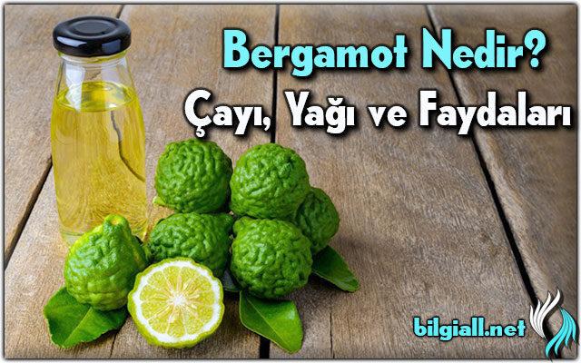 bergamot-nedir;bergamot-receli;bergamot-cayi;bergamot-yagi;bergamot-faydalari