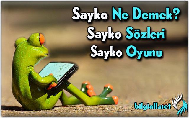 sayko-ne-demek;sayko-sozleri;sayko-oyunu;sayko-nedir;sayko-nasil-oynanir
