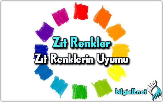 zit-renk;zit-renkler;zit-renk-nedir;zit-renkler-nelerdir;zit-renklerin-uyumu;arada-zit-renkler;mavinin-zit-rengi;yesilin-zit-rengi;kirmizinin-zit-rengi;turuncunun-zit-rengi;sarinin-zit-rengi;morun-zıt-rengi